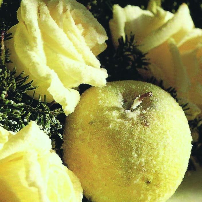 eisblumen-kristall-apfel-winterdeko-bevonboch