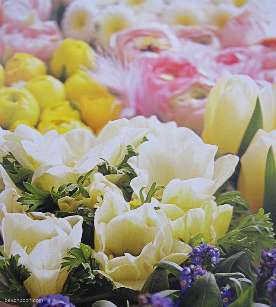 Fruehling-Blumen-Deko-bevonboch