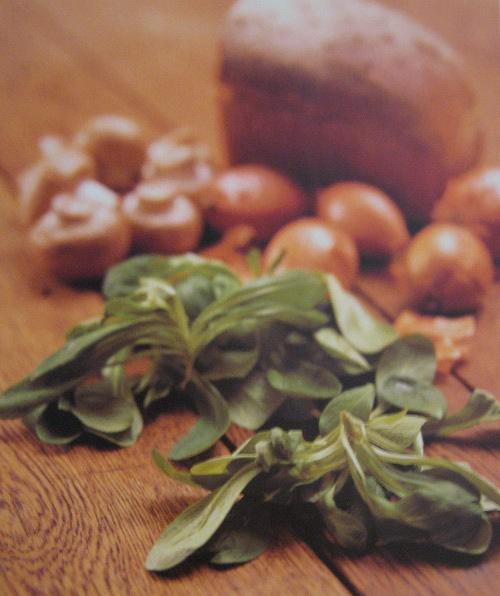 Brigitte von Boch rezept-feldsalat-nuessli-salat