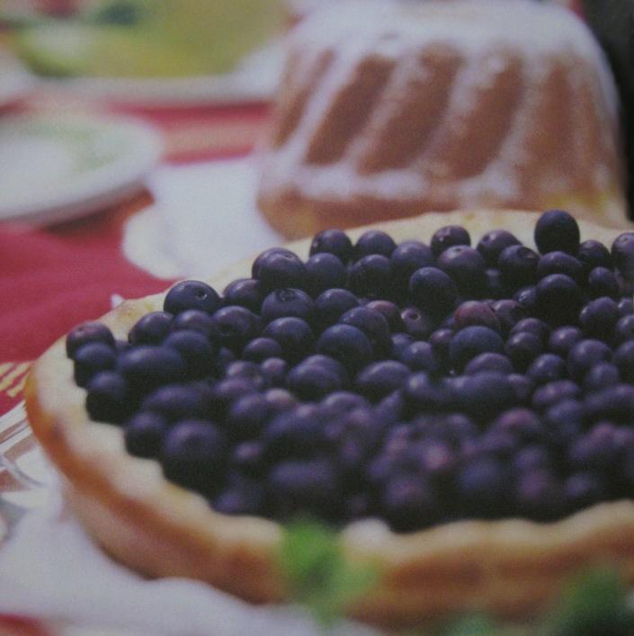 rezept-blaubeerkuchen-bevonboch