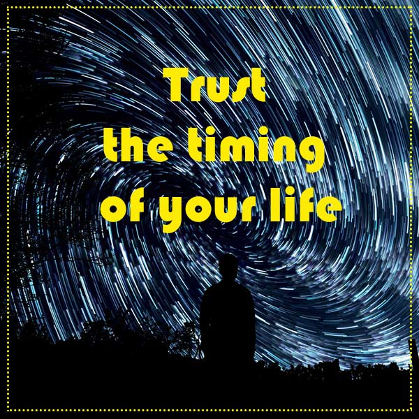 quote-trust-timing
