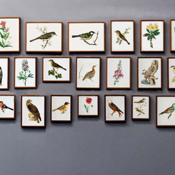 Gallery Wall Hängung viele