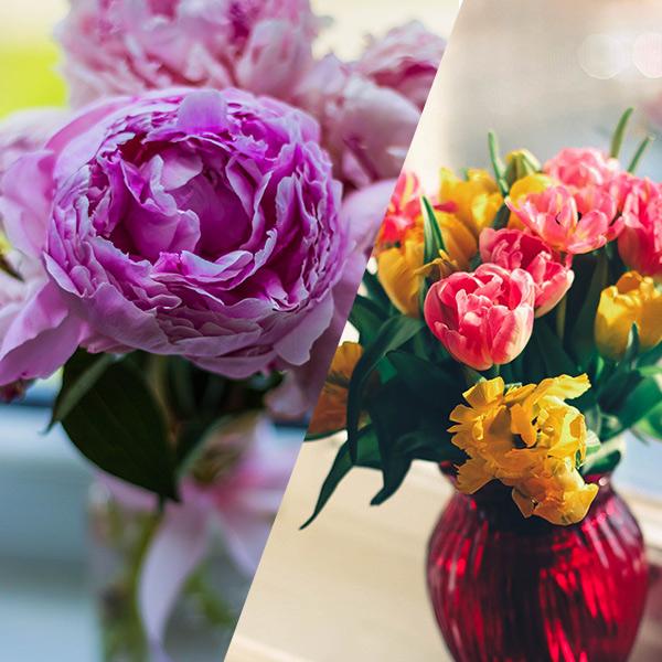 arrangement-flower-inspiration