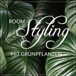 Urban Jungle - Roomstyling mit Zimmerpflanzen.