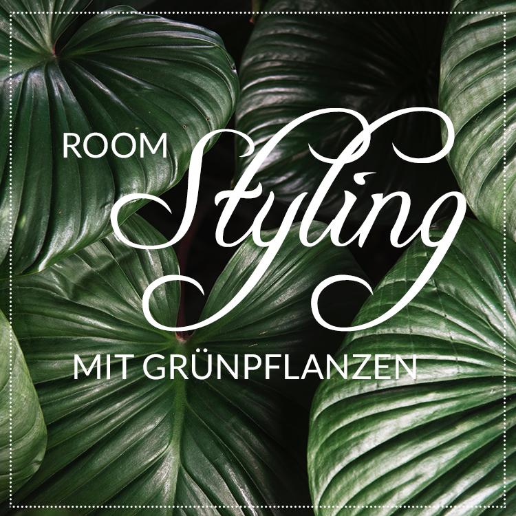 header-pflanzen-styling